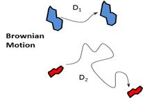 download the planar algebra of a bipartite